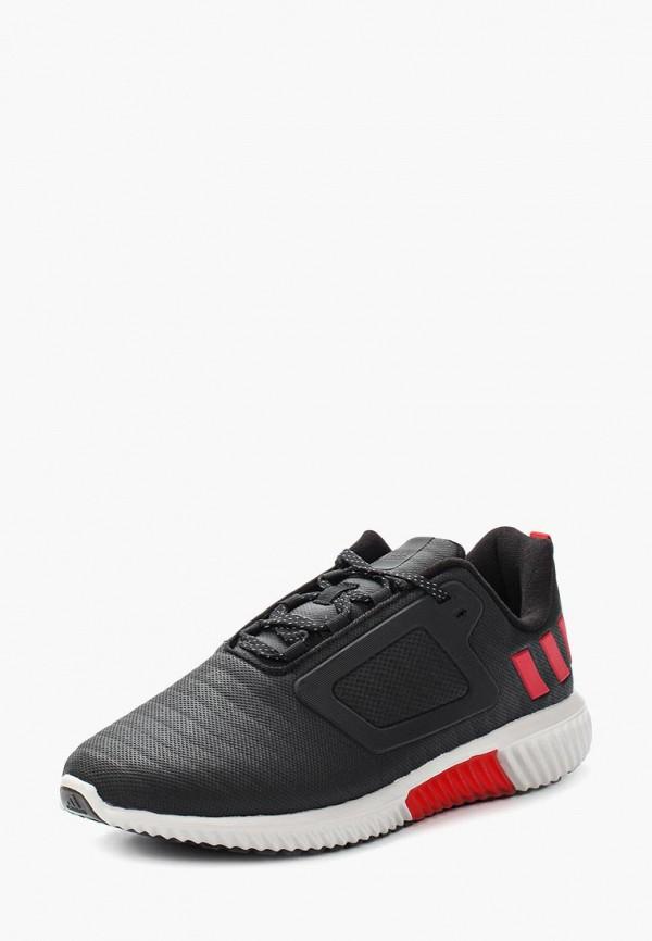 все цены на Кроссовки adidas adidas AD094AMUOX34 онлайн