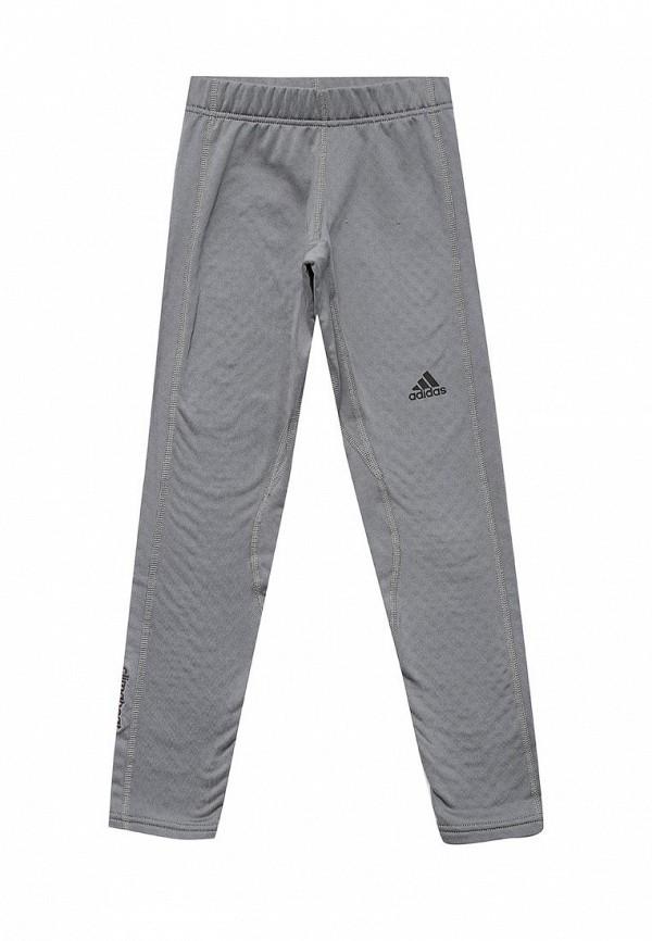 Тайтсы adidas adidas AD094EGUOJ21 цена