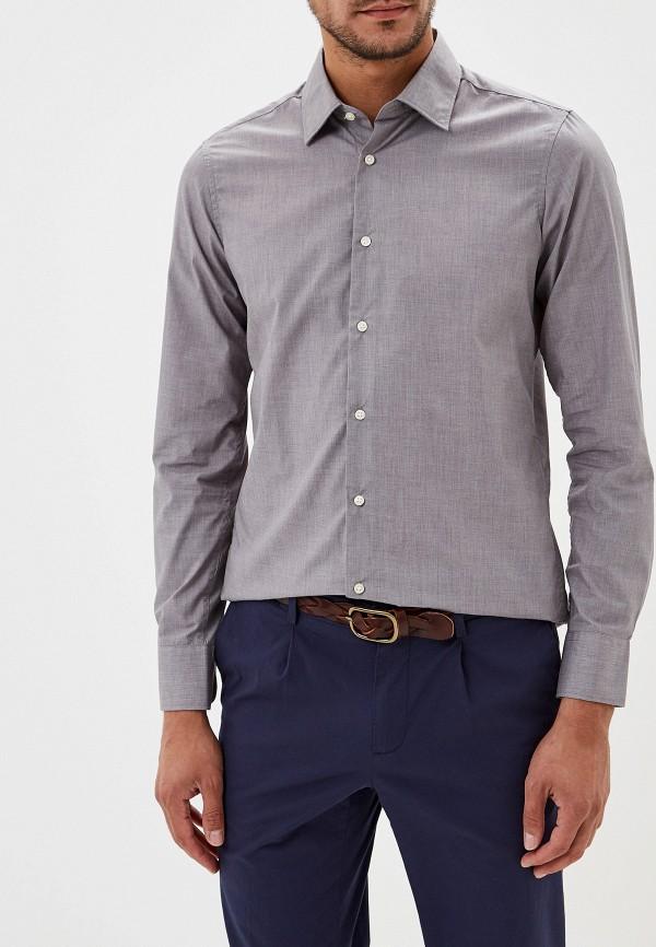 Рубашка Alcott Alcott AL006EMGDKH7 рубашка alcott cf982do р s int
