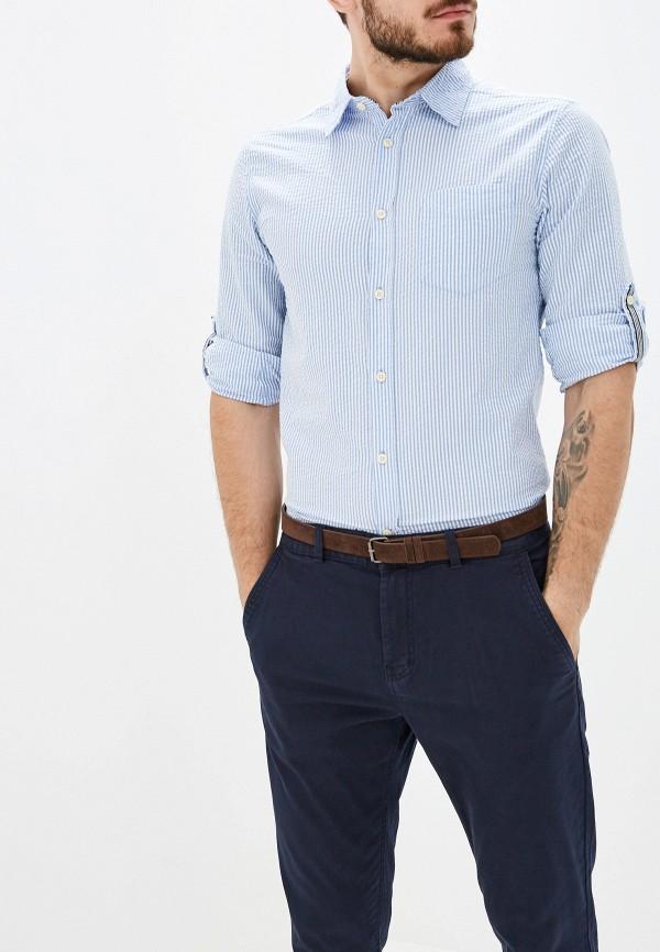 мужская рубашка с длинным рукавом alcott, голубая