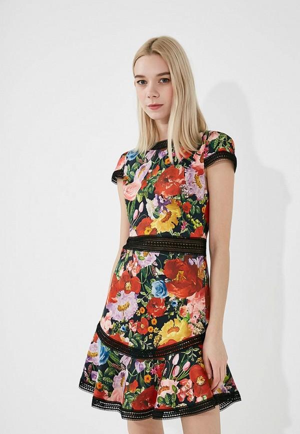 Платье Alice + Olivia Alice + Olivia AL054EWAEQJ9 alice a027fh