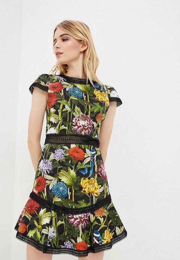 Платье Alice + Olivia Alice + Olivia AL054EWBWOA1 alice