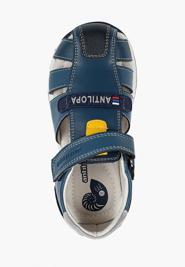 Туфли для мальчика Antilopa AL 2473 Фото 4