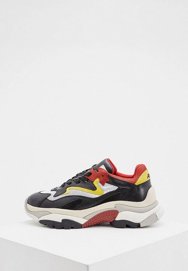 мужские низкие кроссовки ash, разноцветные