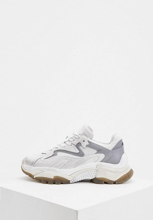 мужские низкие кроссовки ash, серые
