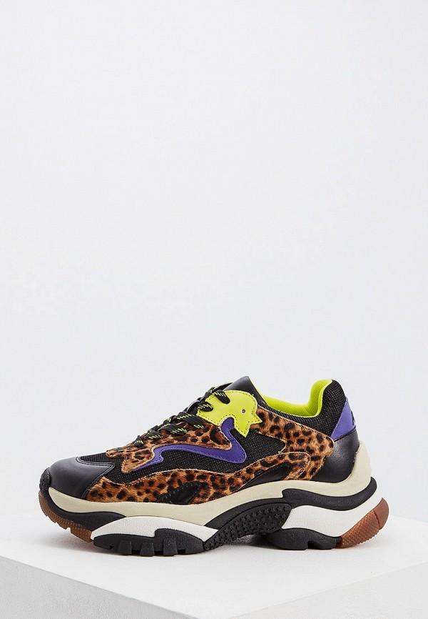 Фото - женские кроссовки Ash разноцветного цвета
