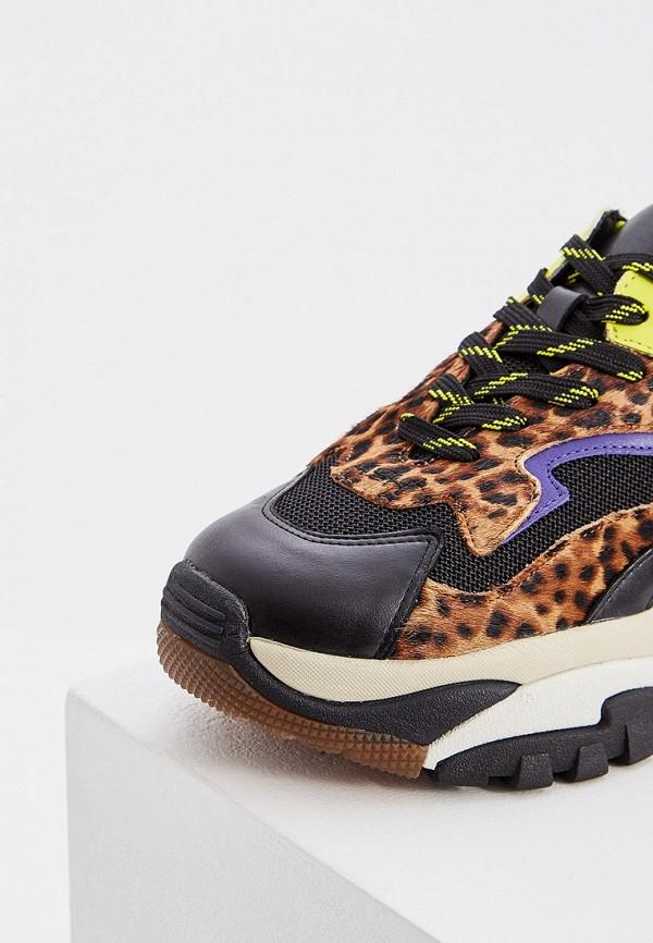 Фото 2 - женские кроссовки Ash разноцветного цвета