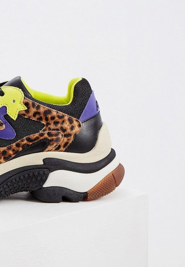 Фото 4 - женские кроссовки Ash разноцветного цвета