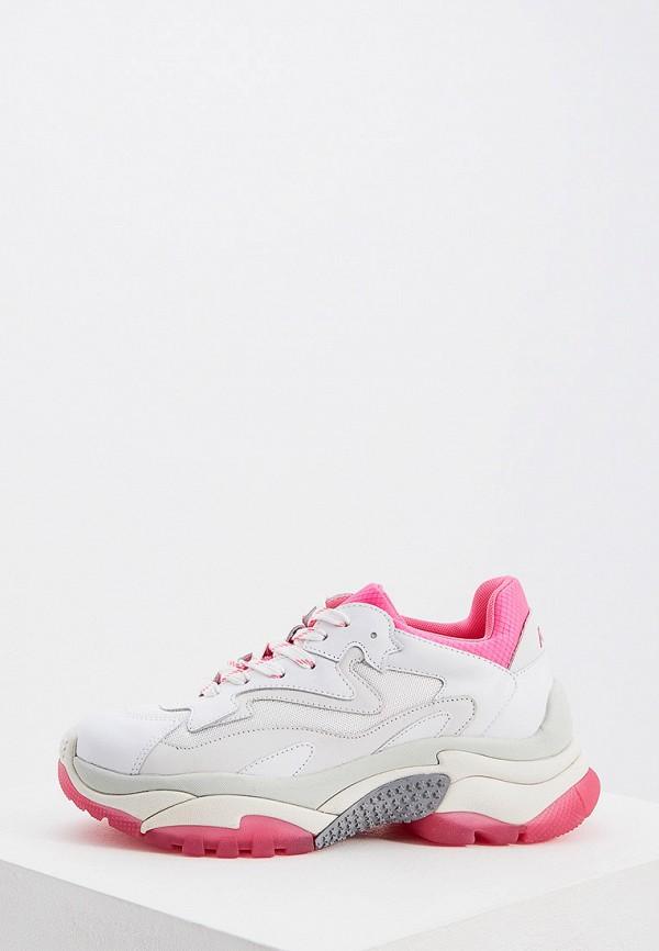 женские кроссовки ash, белые