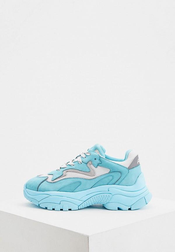 женские низкие кроссовки ash, голубые