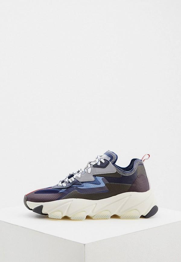женские низкие кроссовки ash, синие