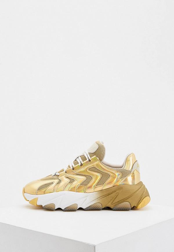 женские низкие кроссовки ash, золотые