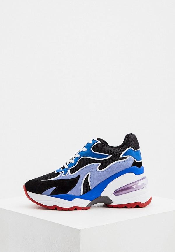 женские кроссовки ash, синие