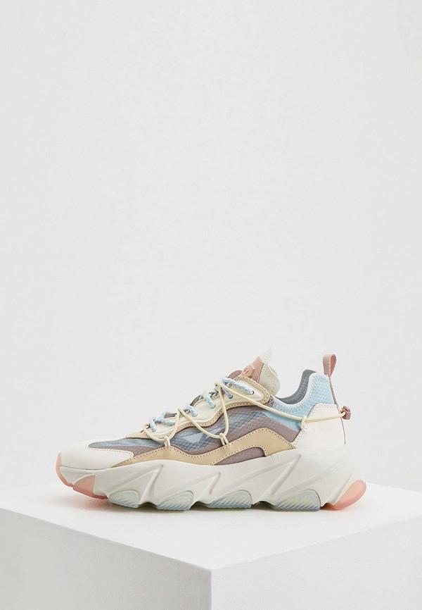 женские кроссовки ash, разноцветные