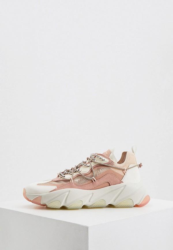 женские кроссовки ash, розовые