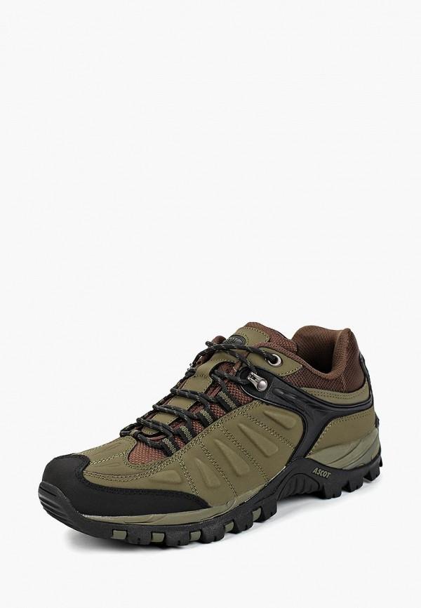 Ботинки трекинговые Ascot Ascot AS821AMCJTY5 arti m ваза zinnia 26 см