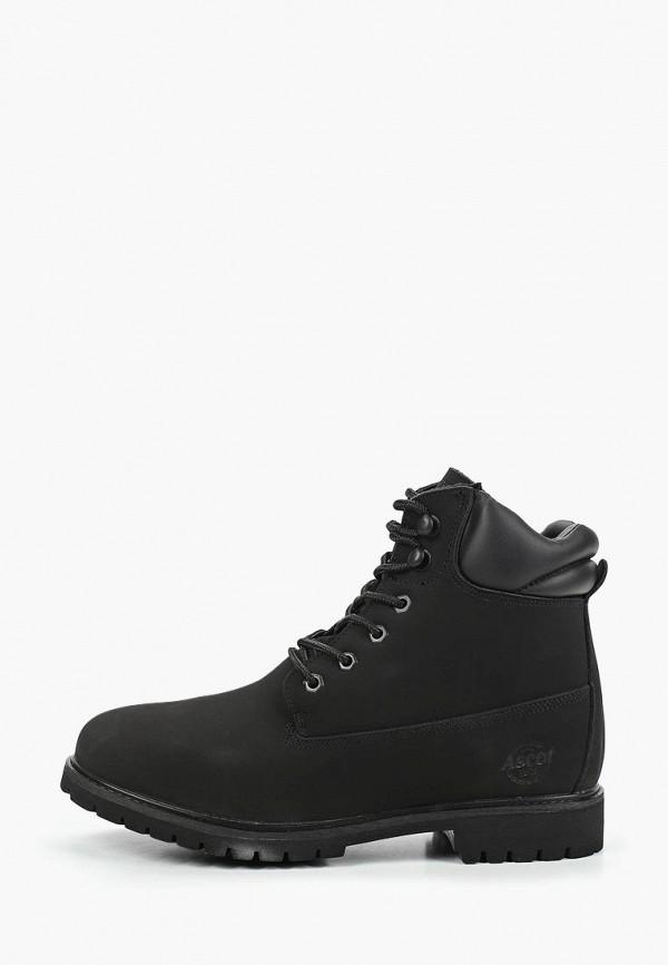 Ботинки Ascot Ascot AS821AMCJUC4