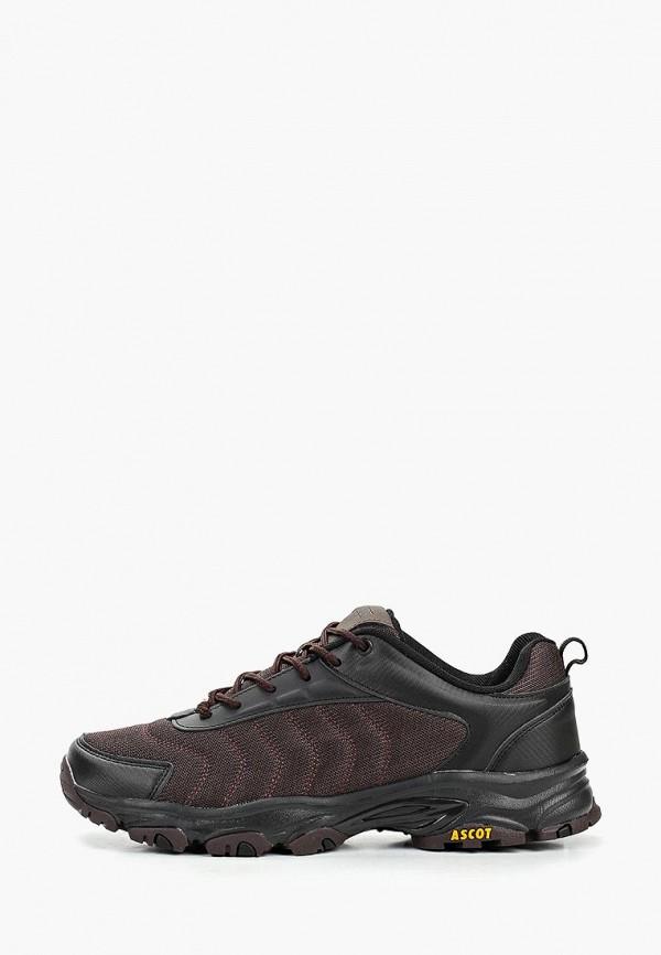 мужские низкие кроссовки ascot, коричневые