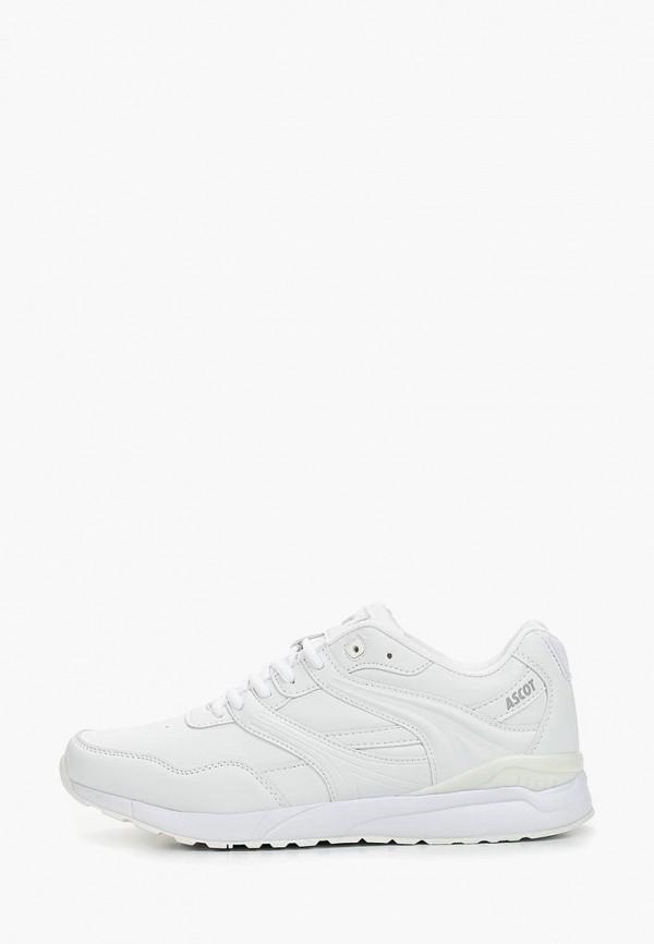 мужские кроссовки ascot, белые