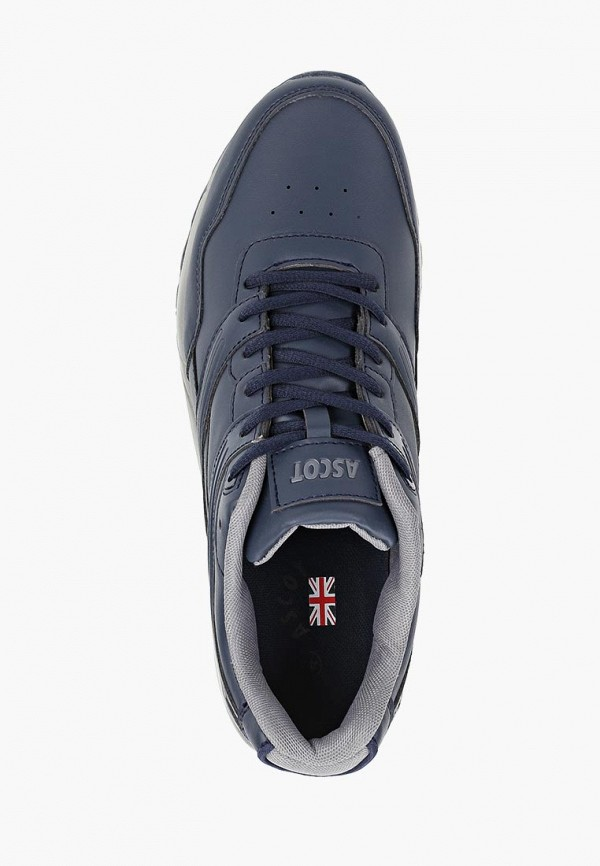 Фото 4 - мужские кроссовки Ascot синего цвета