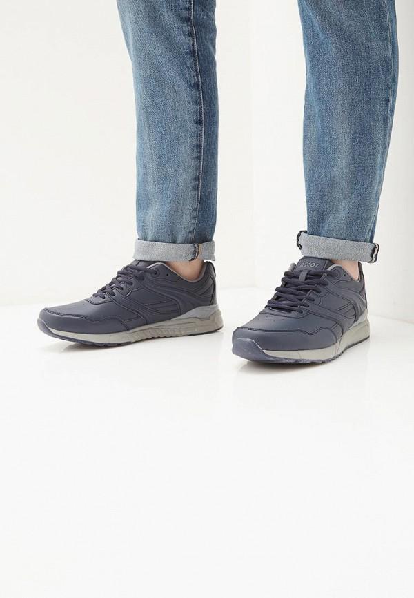 Фото 6 - мужские кроссовки Ascot синего цвета