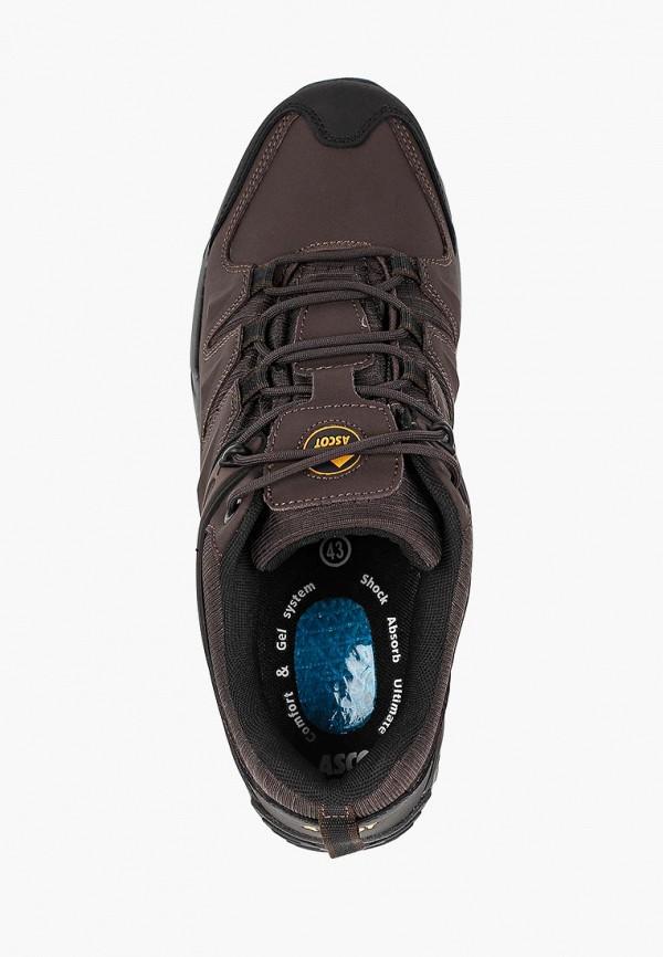 Фото 4 - мужские кроссовки Ascot коричневого цвета