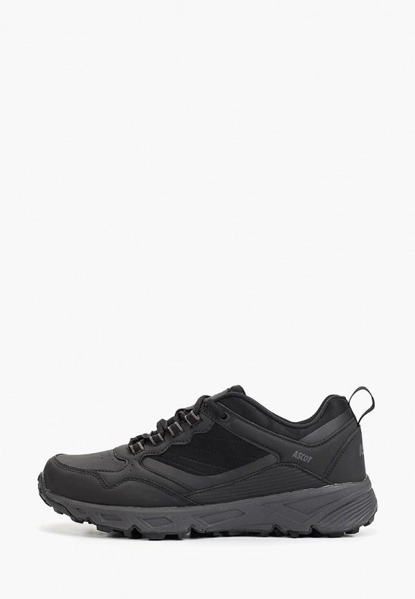 мужские низкие кроссовки ascot, черные
