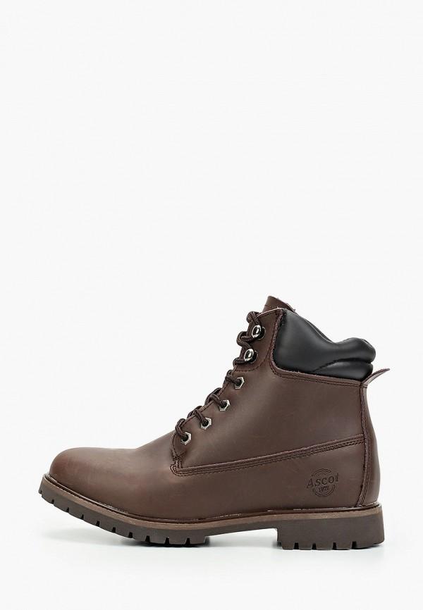 Ботинки Ascot Ascot AS821AMGFTY0