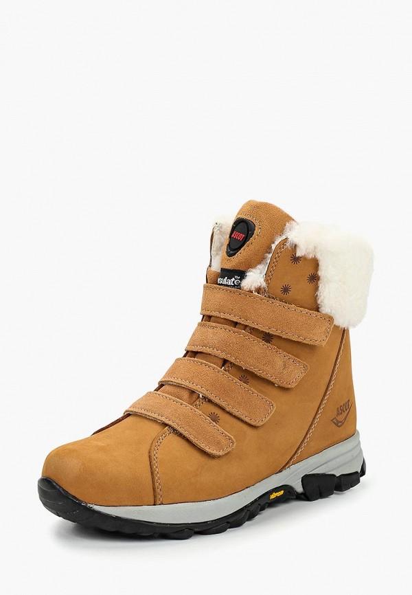 Ботинки Ascot Ascot AS821AWCKEF9