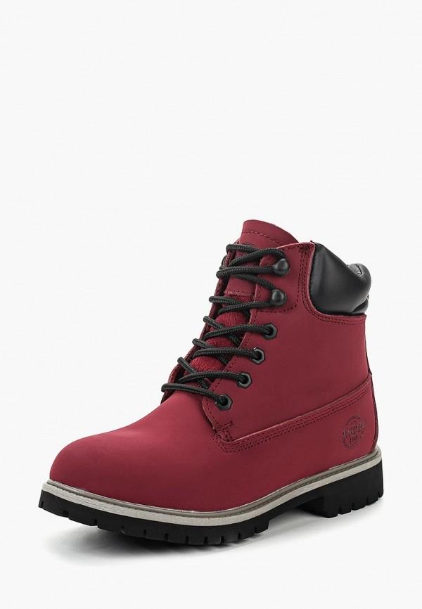 Ботинки Ascot Ascot AS821AWCKEG0