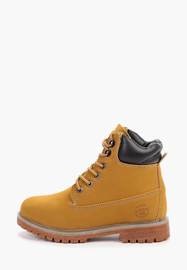 женские ботинки ascot, коричневые