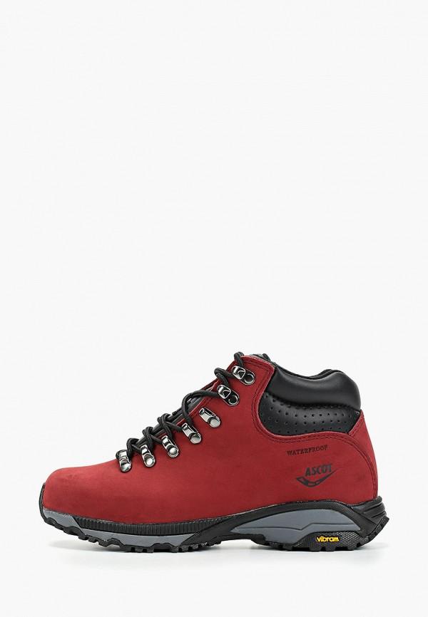 женские ботинки ascot, бордовые