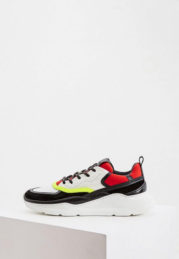 мужские кроссовки barracuda, разноцветные