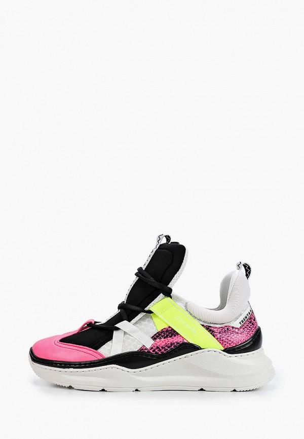 женские кроссовки barracuda, разноцветные