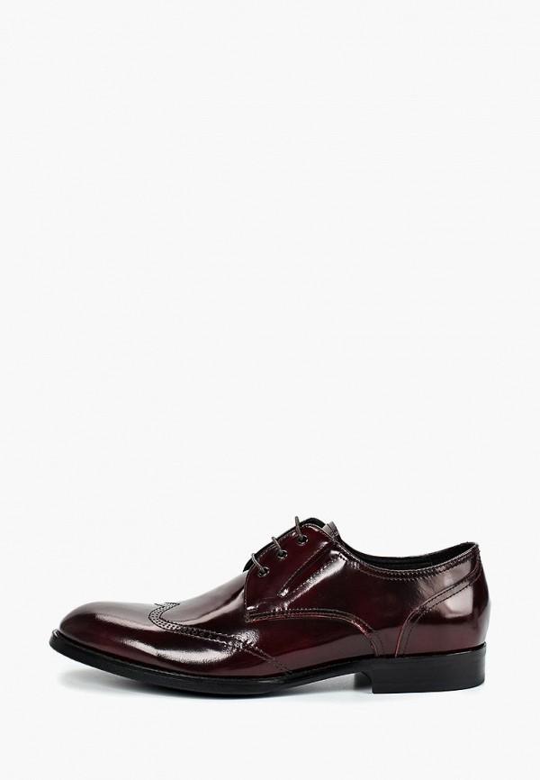 мужские туфли basconi, бордовые