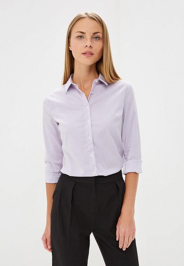 Купить Блуза Befree, Befree BE031EWBXKA6, фиолетовый, Осень-зима 2018/2019