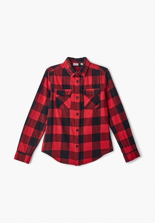 Рубашка Blukids Blukids BL025EBCLDS8