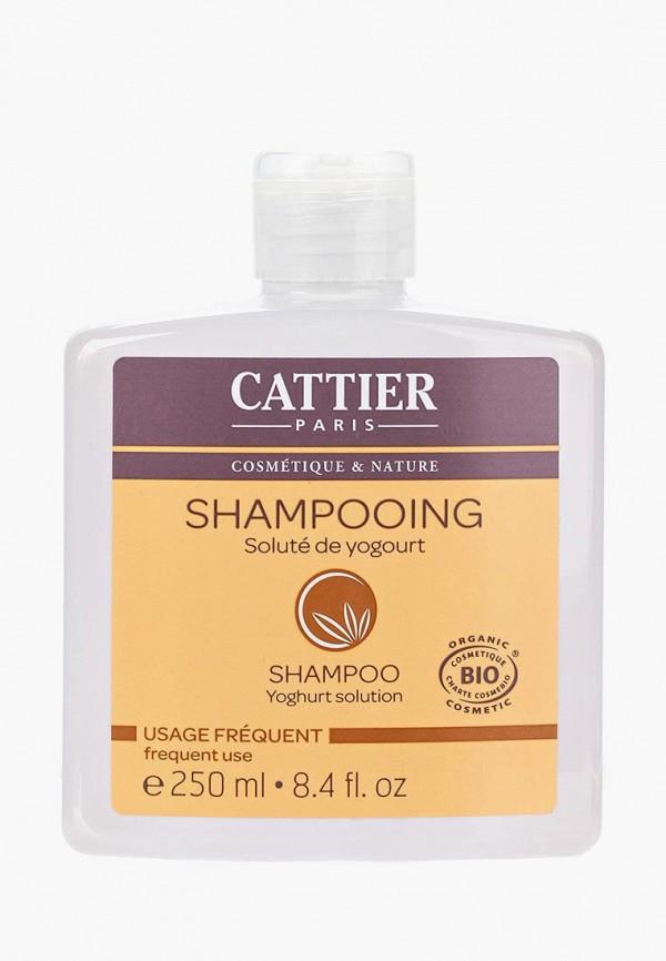 Шампунь Cattier Cattier CA061LWFLK83
