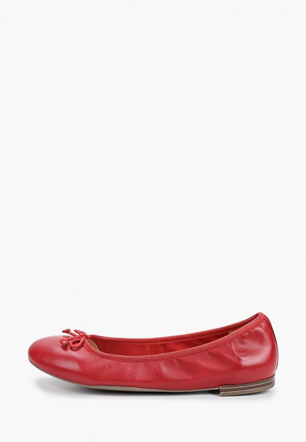 женские балетки caprice, бордовые
