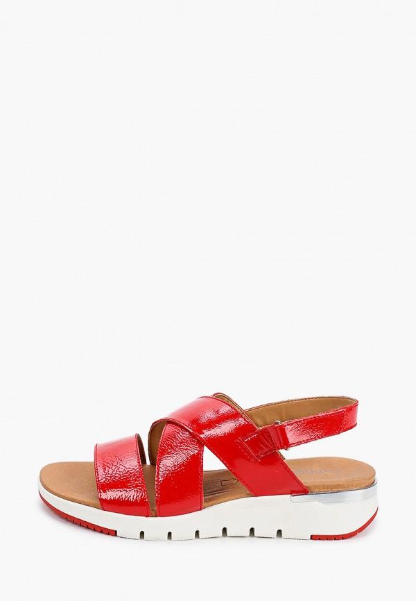 женские сандалии caprice, красные