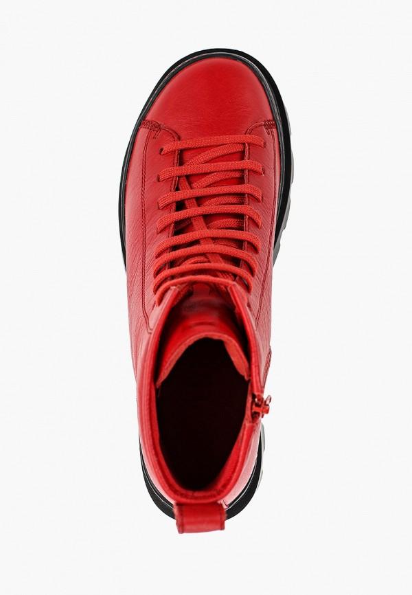 Фото 4 - мужские ботинки и полуботинки Camper красного цвета