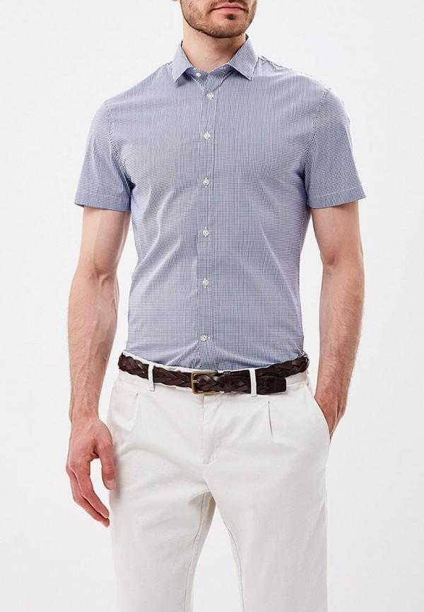 Купить Рубашка Celio, ce007emaopp1, голубой, Весна-лето 2018
