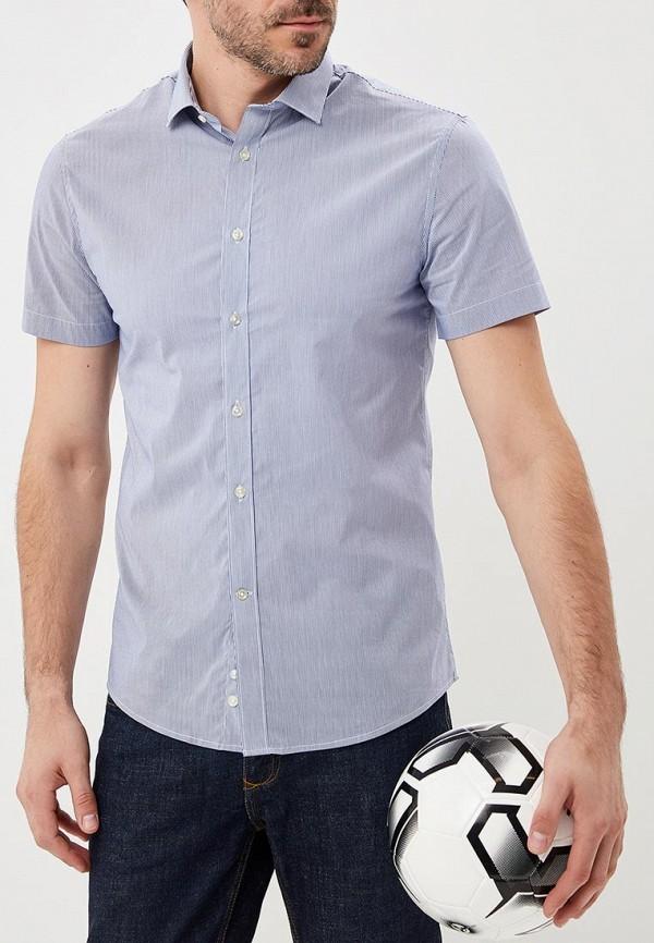 Купить Рубашка Celio, CE007EMAOST9, голубой, Весна-лето 2018