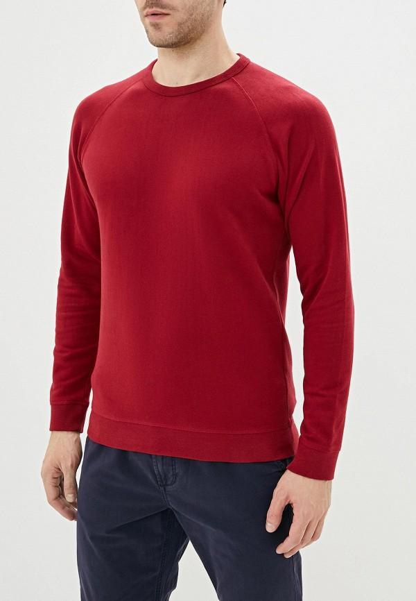 мужской свитшот celio, красный