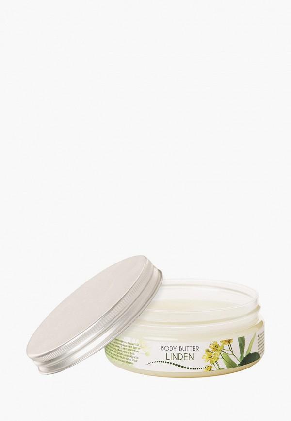 Масло для тела Ceano Cosmetics Ceano Cosmetics CE013LWGJWC8 eldan cosmetics официальный отзывы