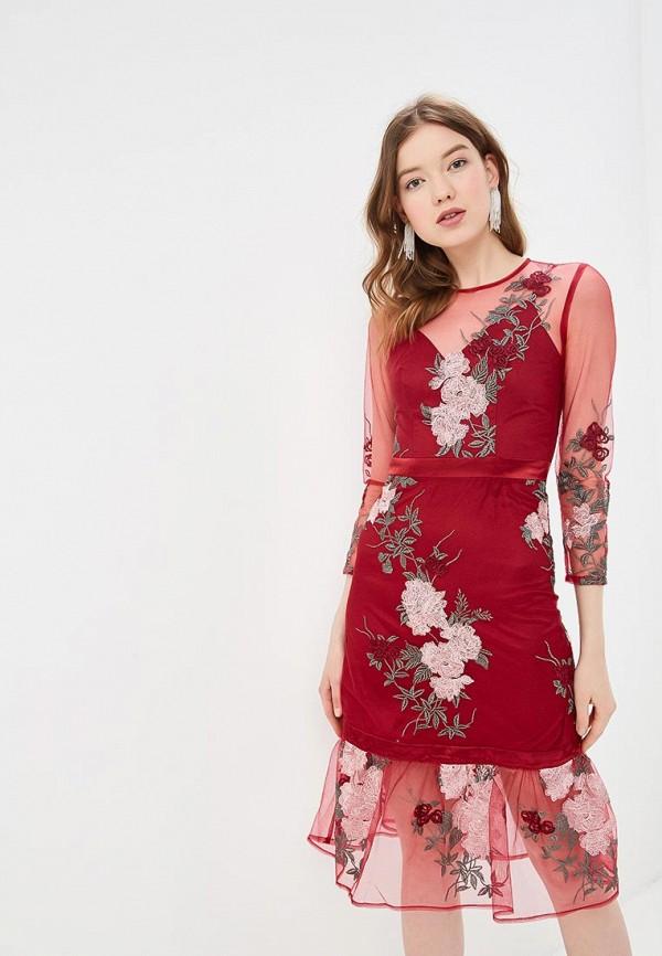 Платье Chi Chi London Chi Chi London CH041EWEWQB3 худи print bar chi sweet home