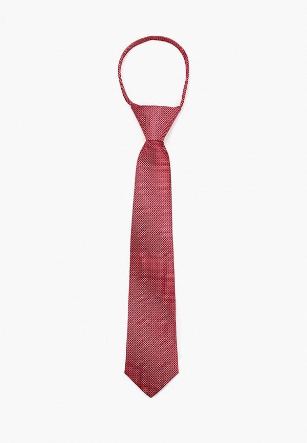 галстуки и бабочки choupette для мальчика, красные