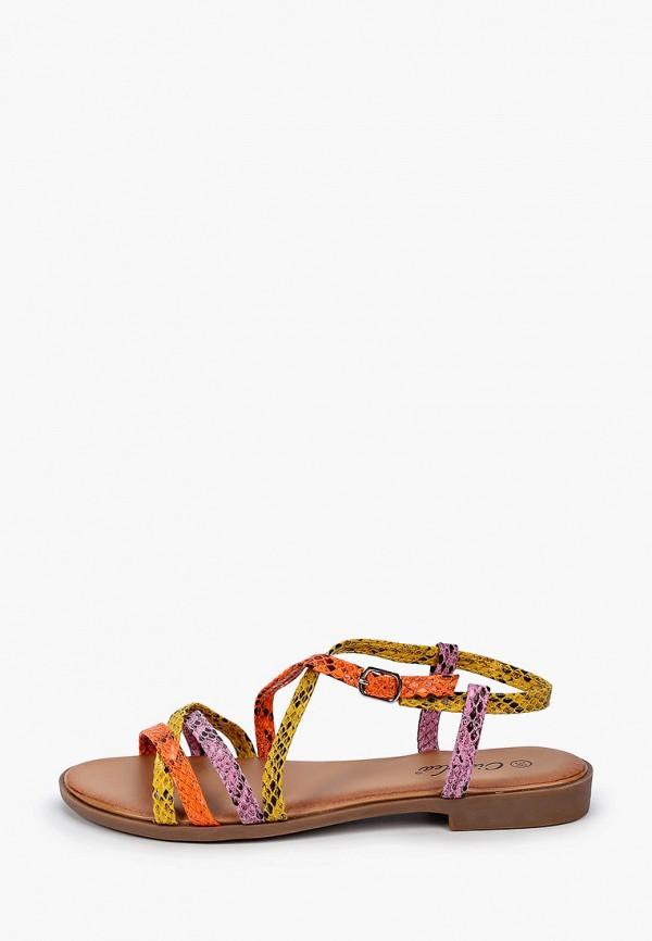 женские сандалии ciaodea, разноцветные
