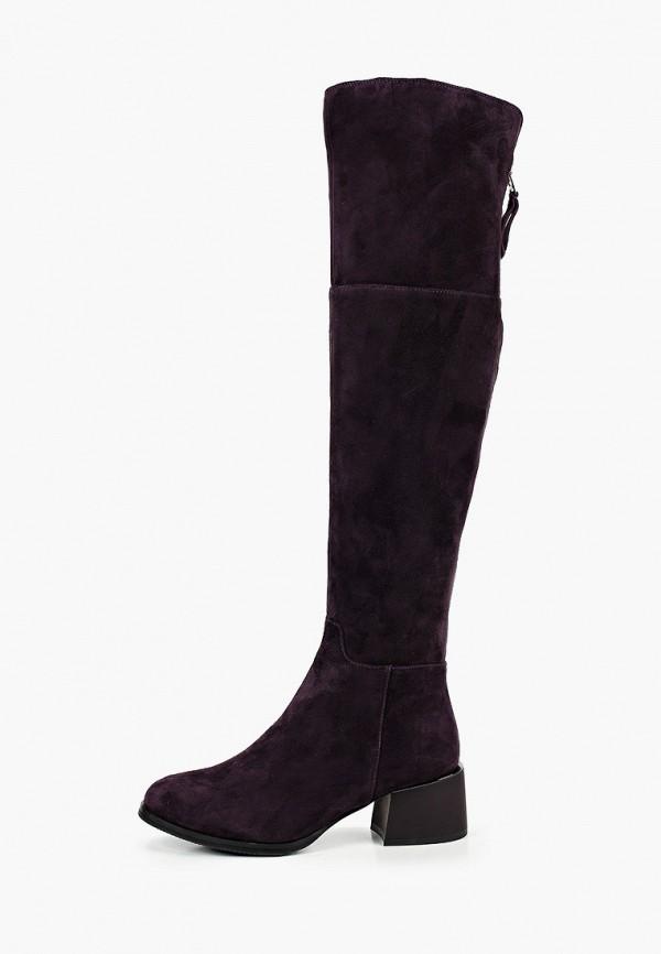 женские ботфорты covani, фиолетовые