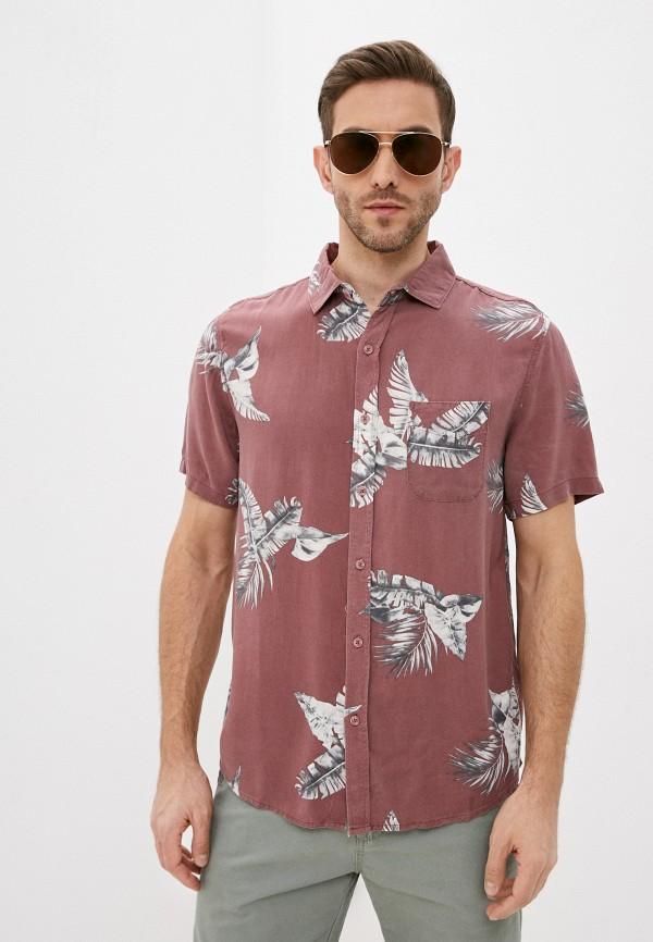 мужская рубашка с коротким рукавом cotton on, розовая